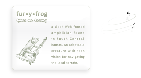 (fyoor-ee-frawg) Furyfrog Digital Agency in Wichita
